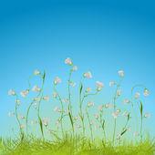 Květinové kompozice — Stock vektor