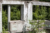 Ruins house forest — Stock Photo