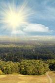 Sun sky clouds forest — Stock Photo