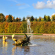 Peterhof. Fountain  Dragon — Stock Photo