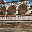 Santa Maria Novella in Florence, Italy — Stock Photo #6099152