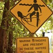 Stock Photo: Signs in Daintree National Park, Australia