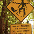 ������, ������: Signs in Daintree National Park Australia