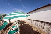 Beach Detail in Pisa, Italy — 图库照片