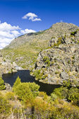 Colors of Mountains in Corsica — Stock Photo