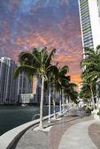 Miami Beach at Sunset, Florida — Stock Photo