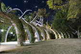 Starry Night over Brisbane Garden — Stock Photo