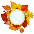 Royalty-Free Stock Vector Image: Autumnal round frame with fall leaf, chestnut, acorn and ashberry