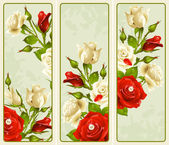 Vector set of Rose vertical banners — Stock Vector