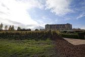 Vineyard Estate — Stock Photo