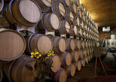 Barrels of Wine — Stock Photo