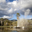 Stock Photo: Geyser