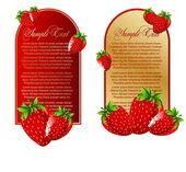 Conjunto de vectores de fondo con frutas fresas — Vector de stock