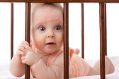 The kid in the crib on a white background. — Stock Photo