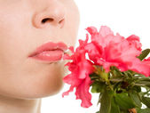 Girl smelling a flower on a white background. — ストック写真