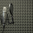 Stock Photo: Microphone in Acoustic Booth