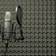 Microphone in Acoustic Booth - Stock Photo