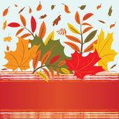 秋の葉 — ストックベクタ