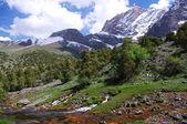 Naturaleza de montaña hermosa — Foto de Stock