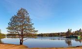 The Verhnee Suzdalskoe lake — Stock Photo