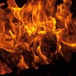 Burning fire wood — Stock Photo #5782988