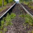 The single-track railway — Stock Photo