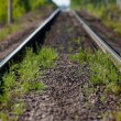 Stock Photo: The single-track railway