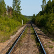 Stock Photo: Railway in wood