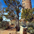 Grand Canyon Desert View Watchtower — Stock Photo #6465334