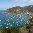Catalina Island aerial view — Stock Photo