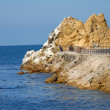 Catalina Island Rock — Stock Photo #6465833