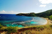 Hanauma Bay Reef beach Honolulu Hawaii — Stockfoto