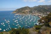 Catalina Island aerial view — Stock Photo