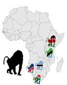 Baboon range map — Zdjęcie stockowe
