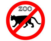 Puma in zoo prohibited — Stock Photo