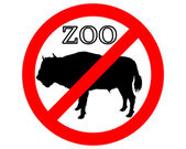 Bison in zoo prohibited — Stock Photo