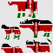 Big Five Kenya — Stock Photo