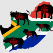 Stock Photo: Big Five South Africcross lines