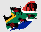 Big Five South Africa cross lines — Stock Photo