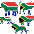Big Five South Africa — Stock Photo