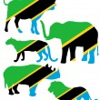 Big Five Tanzania — Stock Photo