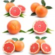 Set of grapefruit fruits with cuts and green leaf isolated — Stock Photo #5405365