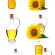 Set of bottles anfd jugs of sunflower oil with flowers isolated — Stock Photo #6731183