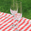 Two empty glasses  in the garden - Stock Photo
