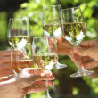 Holding glasses of white wine making toast — Stockfoto #5762013