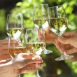 Holding glasses of white wine making a toast - Stok fotoraf