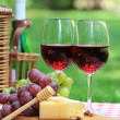 Red wine in the garden — Stock Photo