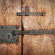 Old door — Stock Photo #6091642