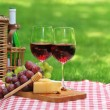 Picnic with red wine — Stock Photo