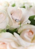Marriage proposal — Stock Photo